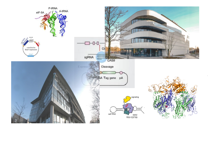 Research topics in the Department of Biochemistry